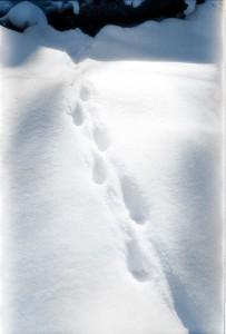 072_vinterbolig