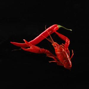 007_Majones-kreps-chilli